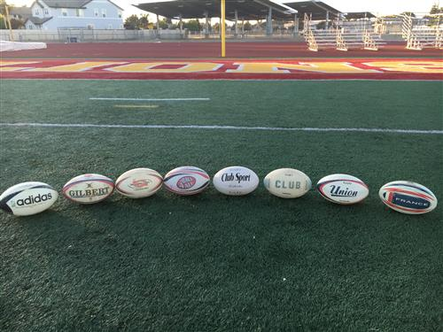 Rugby balls lined up in front of LIONS on the football field